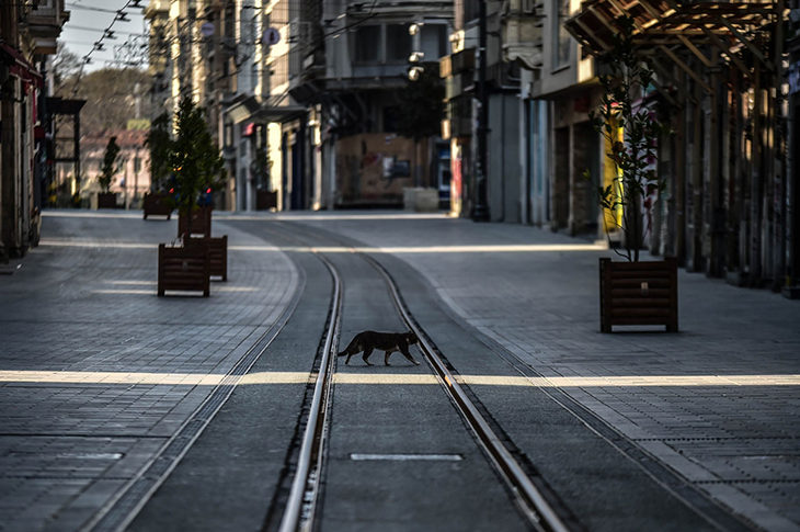Sokağa Çıkma Yasağında 'Özel Gereksinimli' Kişiler Muaf Olacak