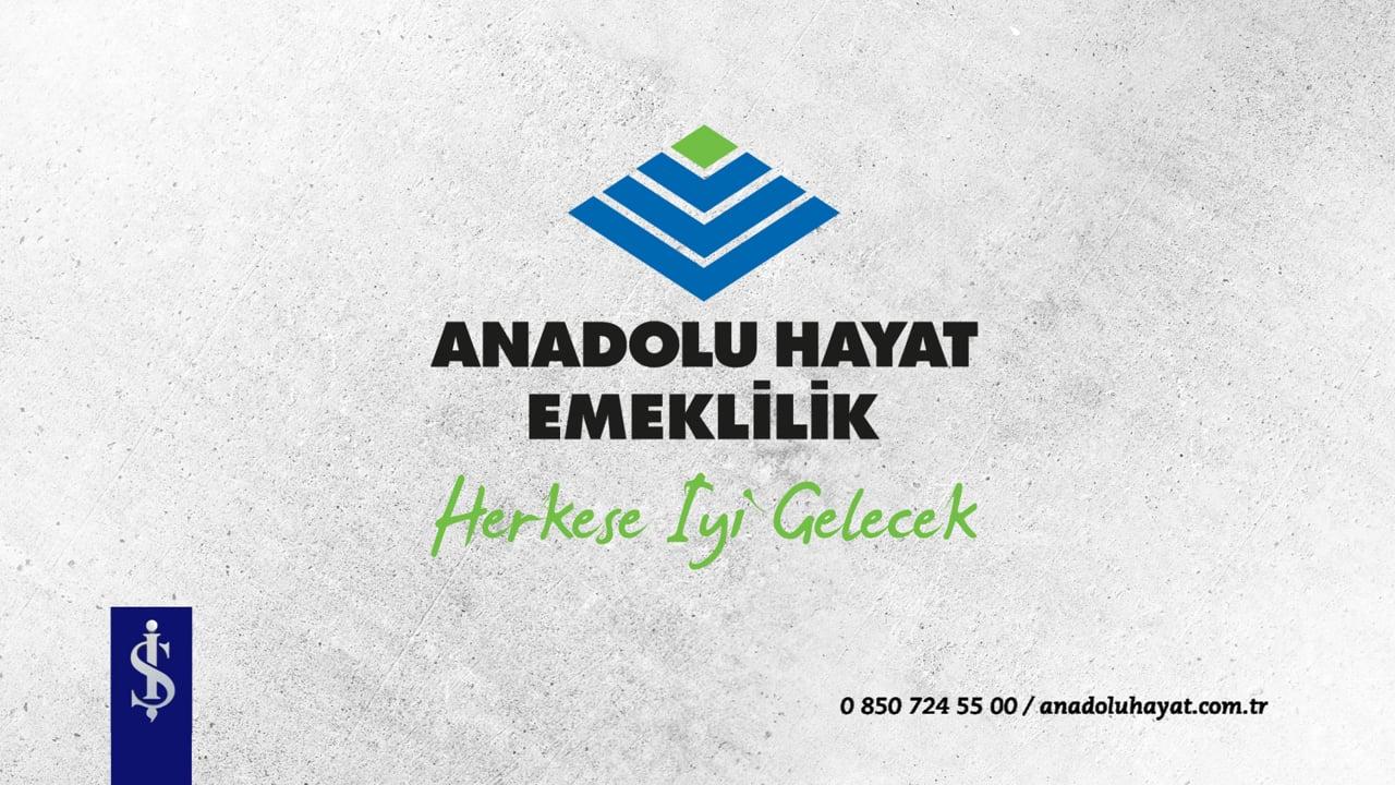 Anadolu Hayat Emeklilik Engellilere Yönelik DEV BES Planını Hayata Geçirdi