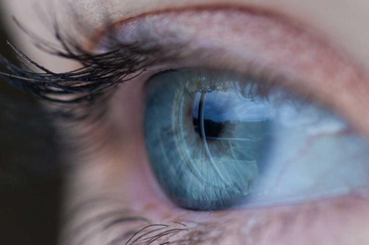 Görme Engelliye Gen Tedavisiyle Kısmi Görüş Sağlandı