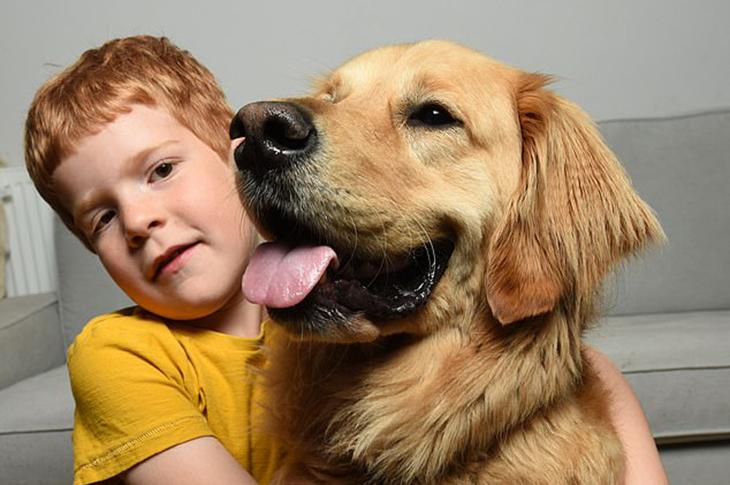 Köpek Vesper Görme Engelli Çocuğun Kahramanı Oldu